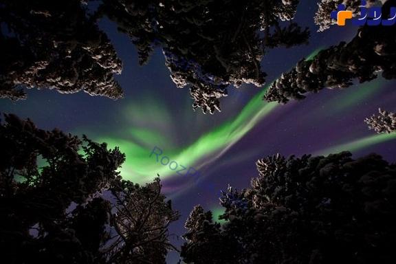 عکسی بی نظیر از شفق قطبی