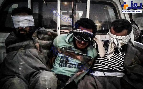 اسارت چند داعشی توسط لشکر فاطمیون+عکس