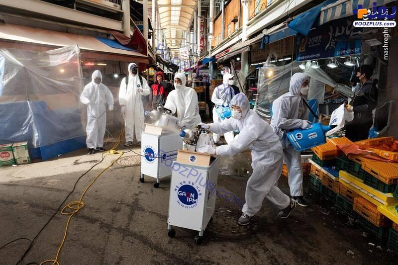 نحوه ضدعفونی کردن بازار در کره جنوبی +عکس