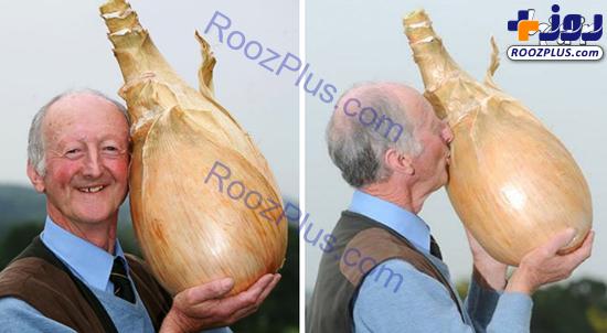 باور نمیکنید این سبزیجات غول پیکر، واقعی باشند! +عکس