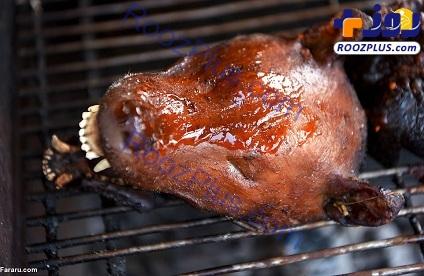 کشتن سگها برای مصرف رستوران ها/تصاویر(16+)