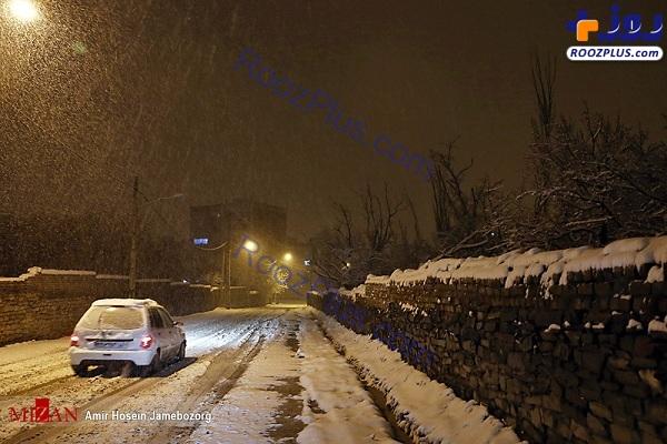 بارش برف بهاری در همدان +عکس