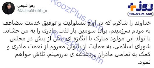 خانم نماینده مجلس برای بار سوم مادر شد/عکس